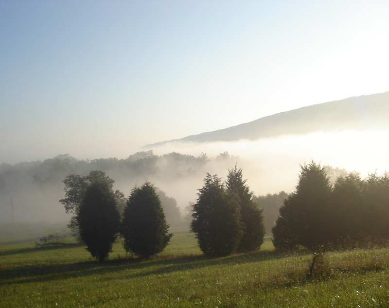 Fog-on-the-farm